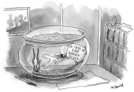 happy goldfish cartoon. Goldfish cartoon