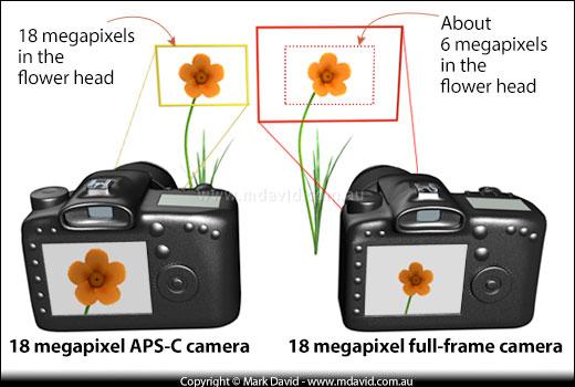 Mark David | Pixel density in camera sensors